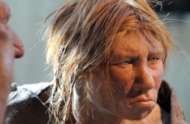 trove-of-neanderthal-bones-found-